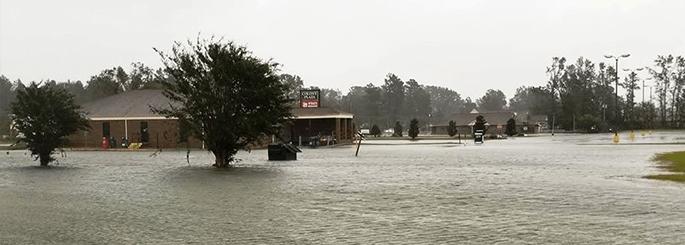 BluSky Hurricane Florence Reponse